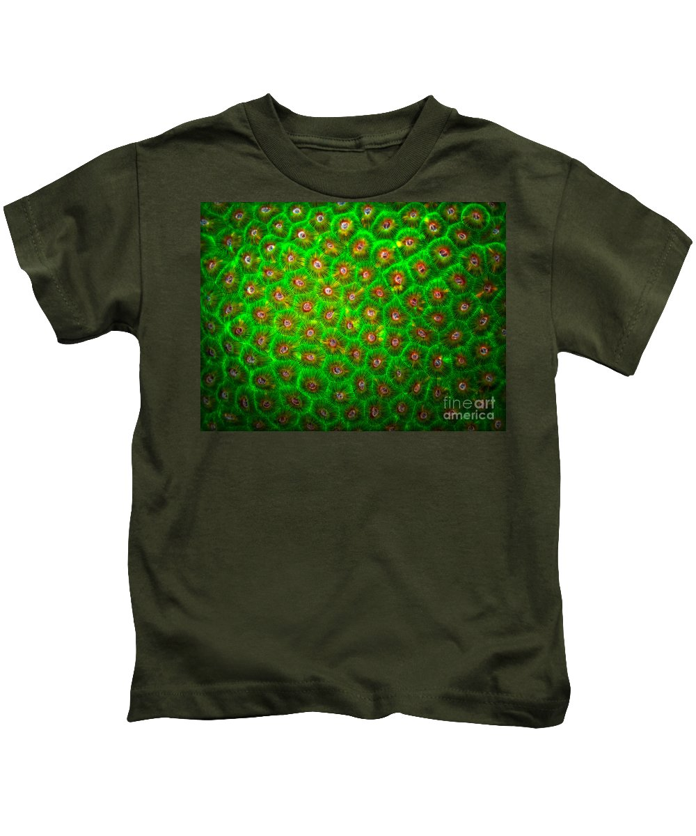 Green Coral Kids T-Shirt featuring the photograph Emerald Coral by Doug Sturgess