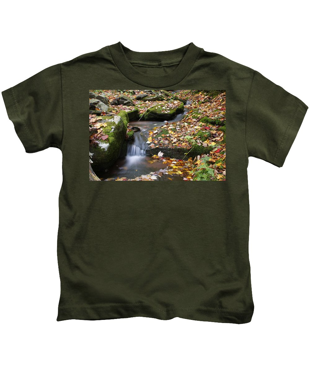 Fall Kids T-Shirt featuring the photograph Fallen Leaves by Jeff Bord