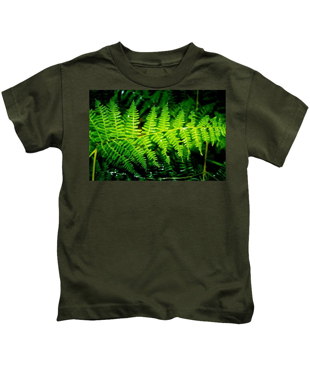 Fern Kids T-Shirt featuring the photograph Fern II by Ellen Heaverlo