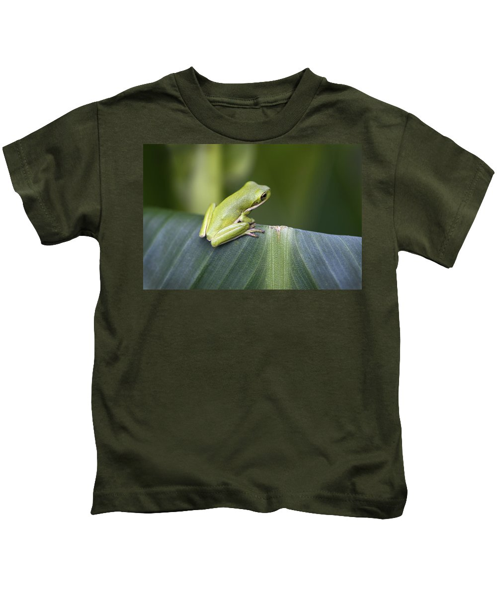 Hyla Cinerea Kids T-Shirt featuring the photograph Froggie On A Leaf by Kathy Clark