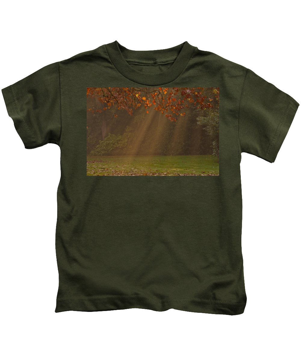 Sunlight Kids T-Shirt featuring the photograph Golden Sunbeams by Dawn OConnor