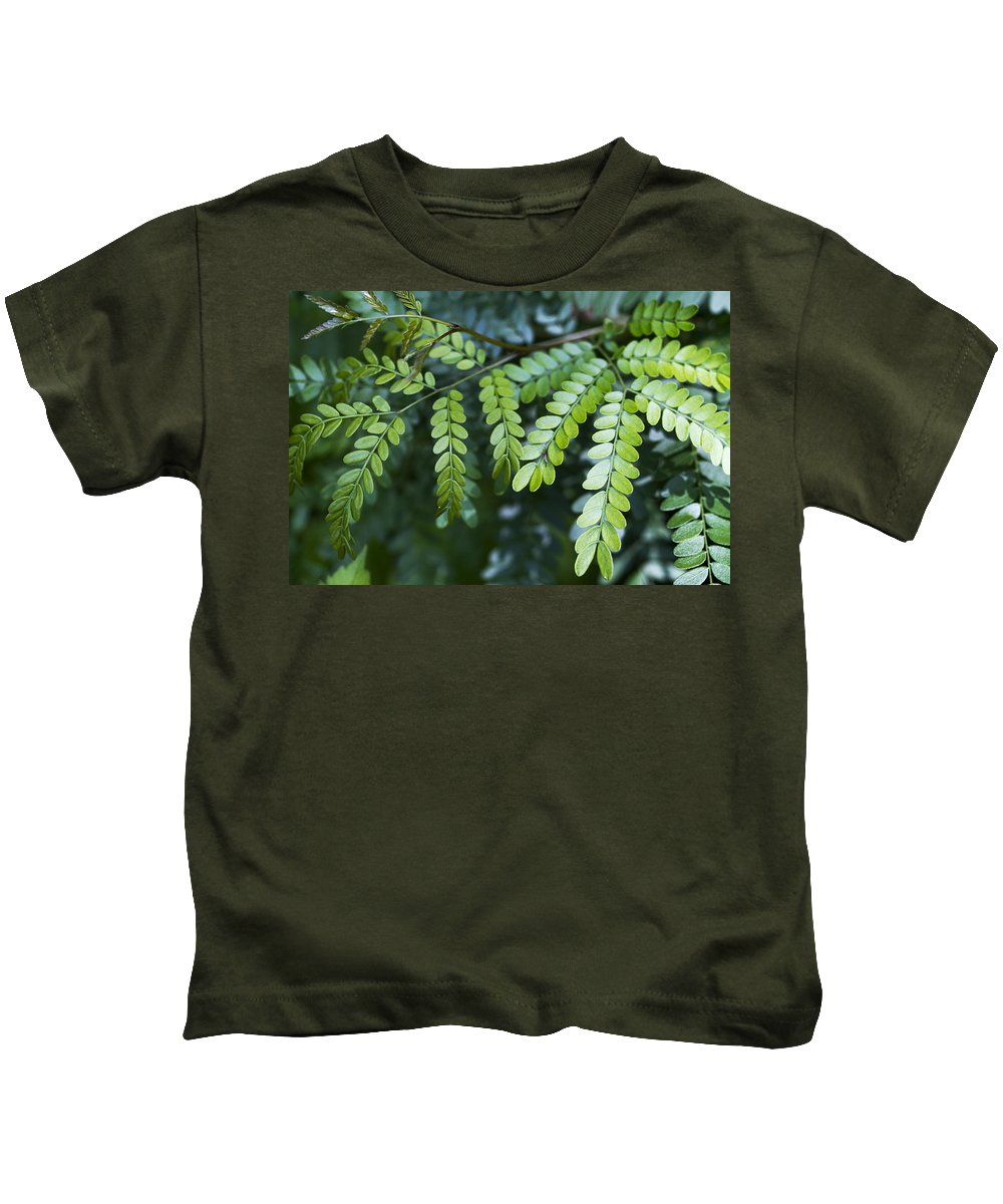 Green Kids T-Shirt featuring the photograph Green by Kathy Clark