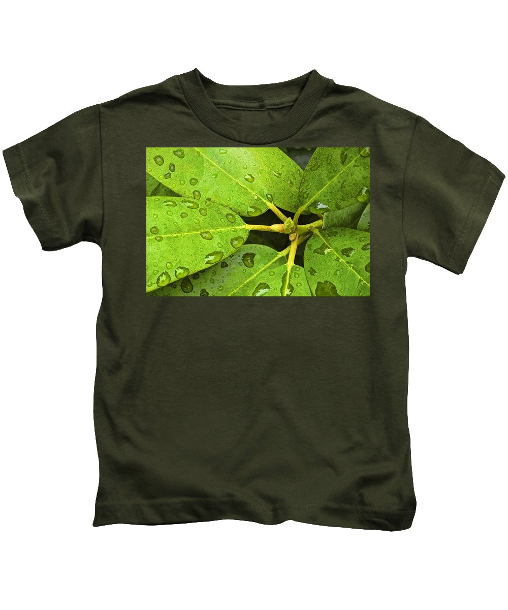 Art Kids T-Shirt featuring the photograph Green Leaves With Water Droplets by Randall Nyhof