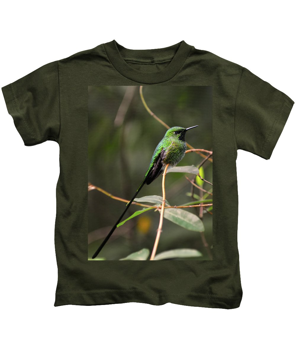 Green Kids T-Shirt featuring the photograph Green Tailed Trainbearer by Bill Dodsworth
