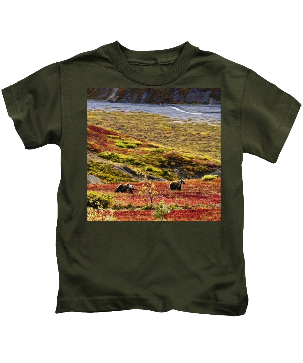 Animals In The Wild Kids T-Shirt featuring the photograph Grizzly Bears And Fall Colours, Denali by Yves Marcoux
