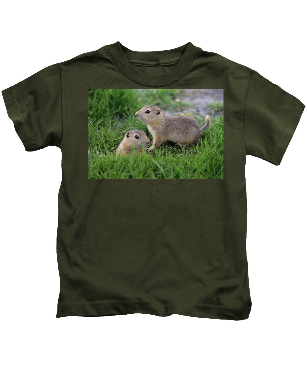 Close Shots Kids T-Shirt featuring the photograph Ground Squirrels, Oak Hammock Marsh by Mike Grandmailson