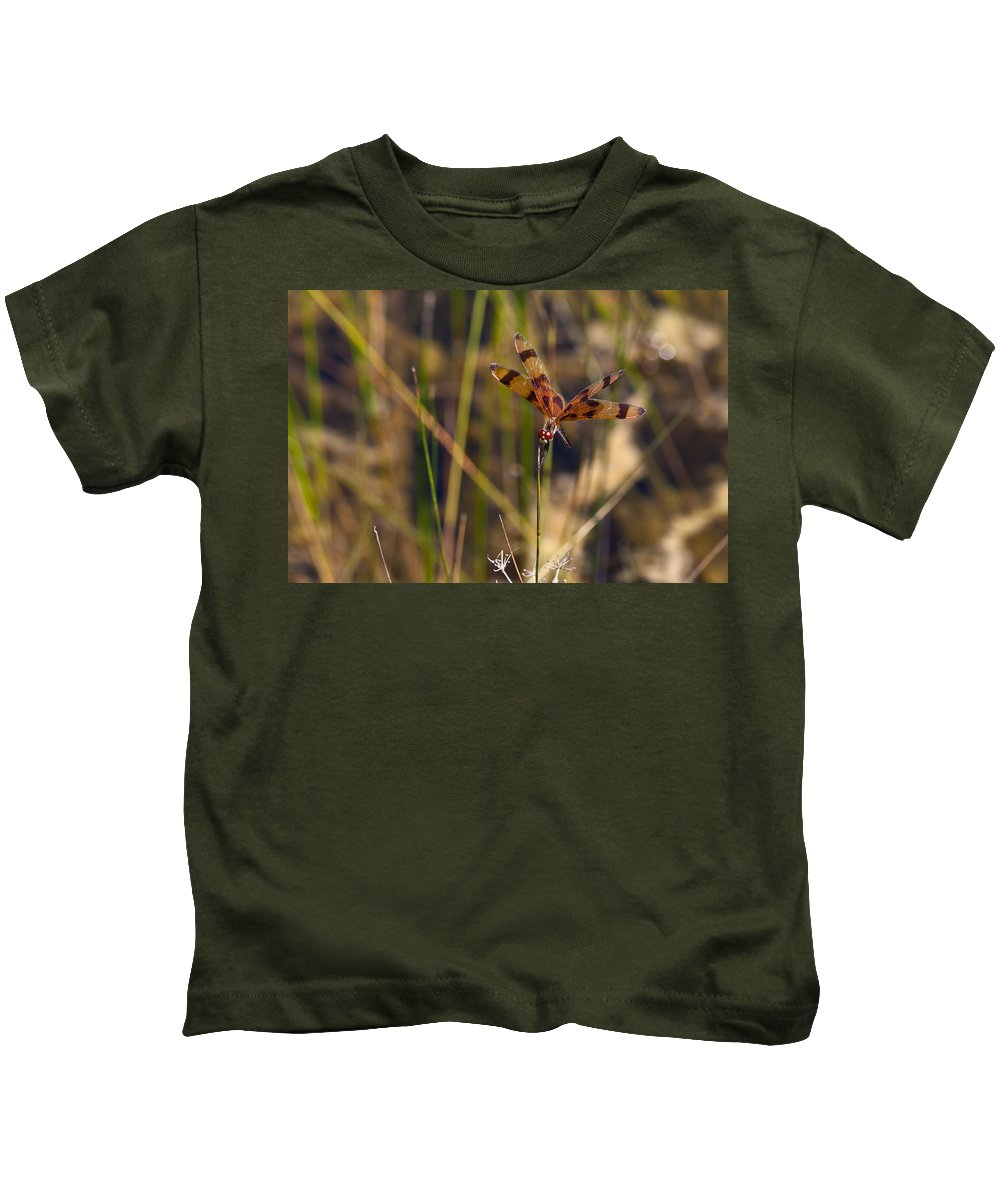 Color Kids T-Shirt featuring the photograph Halloween Pennant Dragonfly by Ed Gleichman