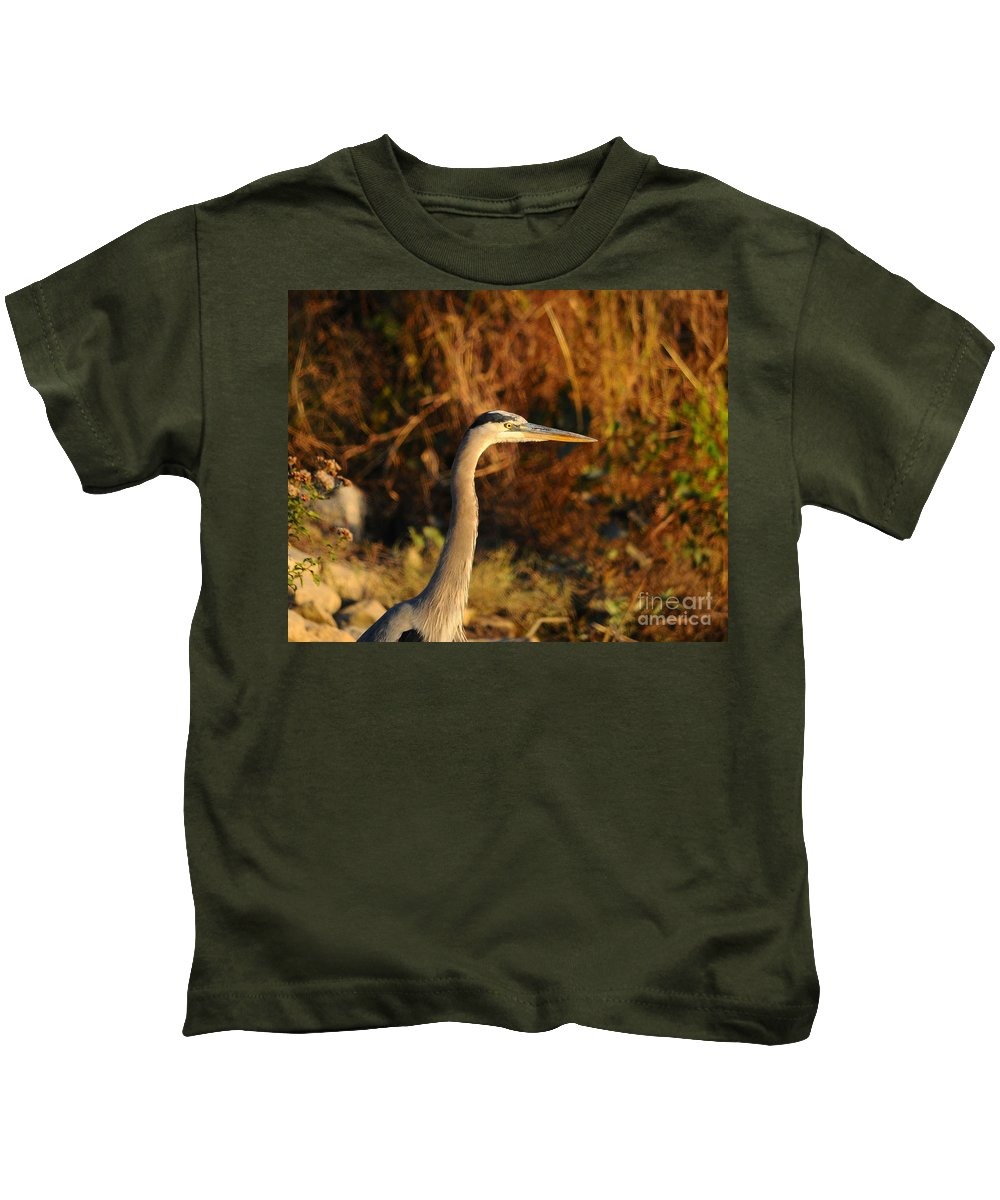 Great Blue Heron Kids T-Shirt featuring the photograph Handsome Heron by Al Powell Photography USA
