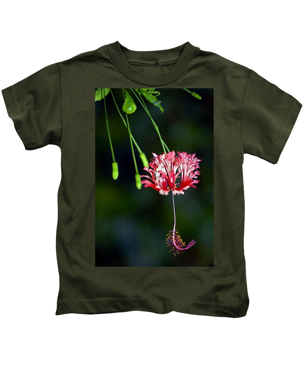 Hawaii Kids T-Shirt featuring the photograph Hanging Coral Hibiscus by Lehua Pekelo-Stearns
