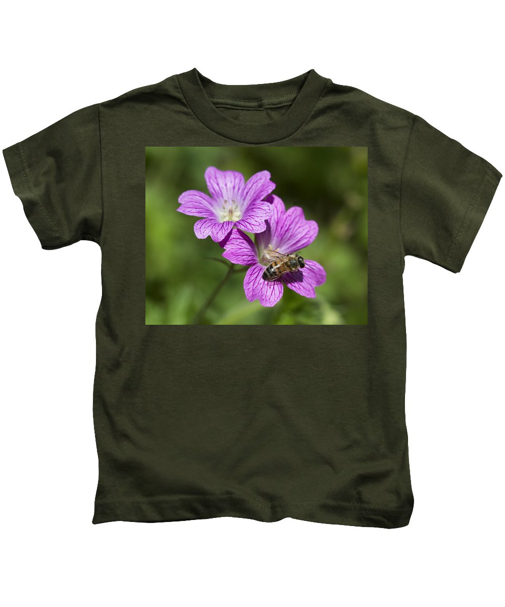 Geraniaceae Kids T-Shirt featuring the photograph Hardy Geranium And Honey Bee by Kathy Clark
