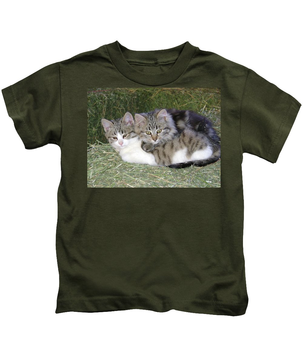 Cat Kids T-Shirt featuring the photograph Haystack Buddies by Charles and Melisa Morrison