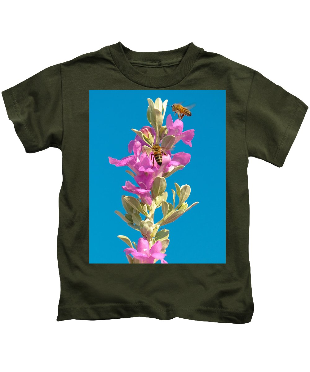 Backyard Kids T-Shirt featuring the photograph Honey Bees On Sage 1 by Sean Wray
