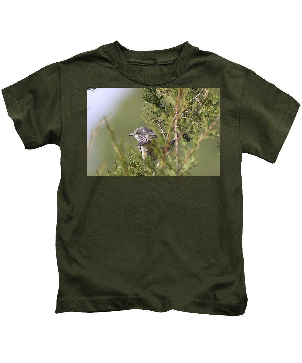 Northern Mockingbird Kids T-Shirt featuring the photograph In The Bushes by Travis Truelove