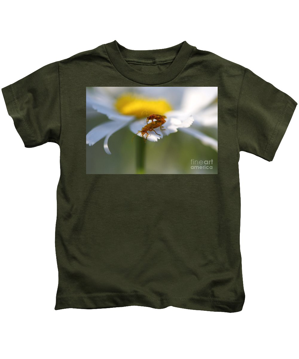 Bugs Kids T-Shirt featuring the photograph It Takes Two by Sharon Talson
