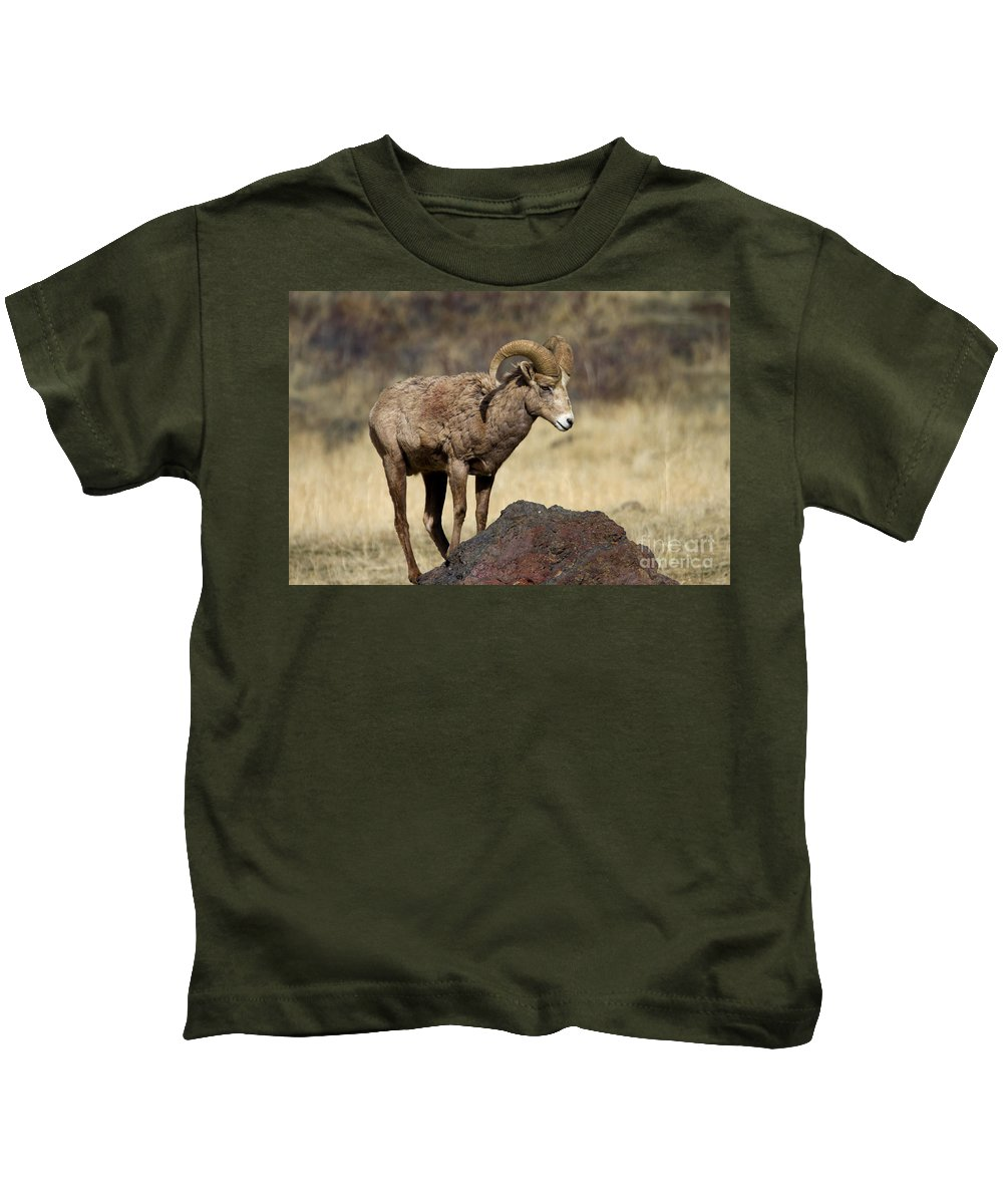 Bighorn Kids T-Shirt featuring the photograph King Of The Rock by Mike Dawson