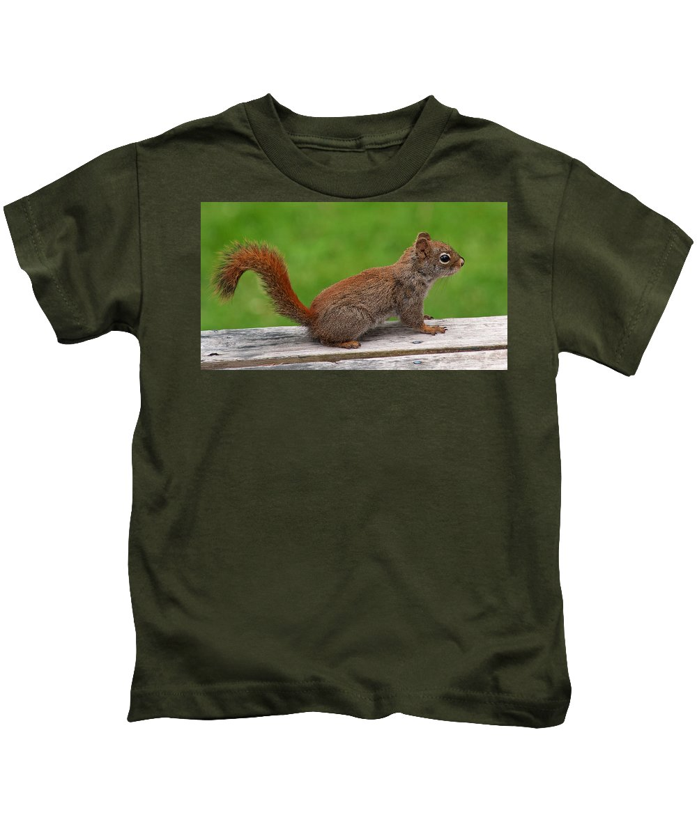 Squirrel Kids T-Shirt featuring the photograph Little Red by Jeff Galbraith