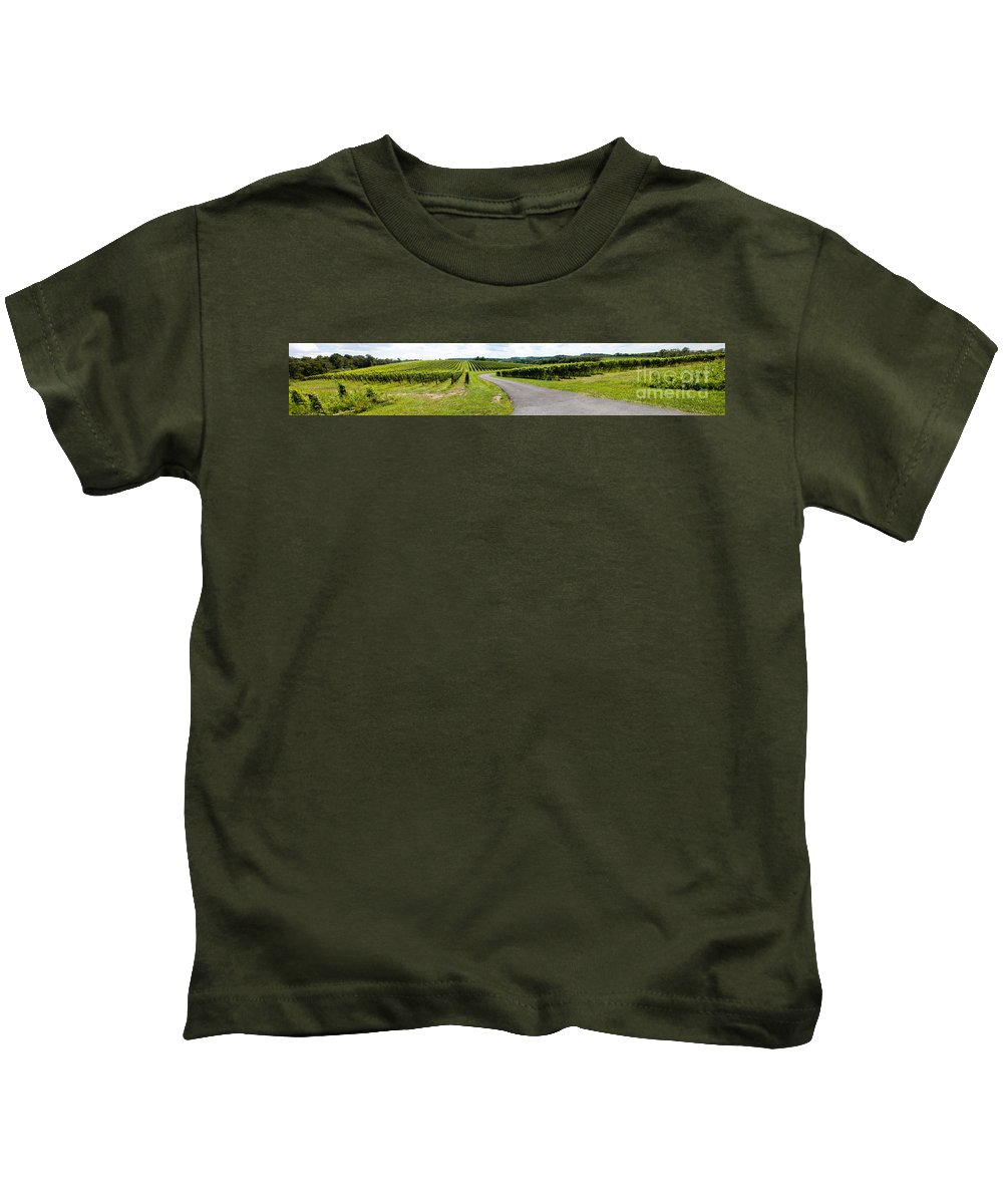 Landscape Kids T-Shirt featuring the photograph Maryland Vineyard Panorama by Thomas Marchessault