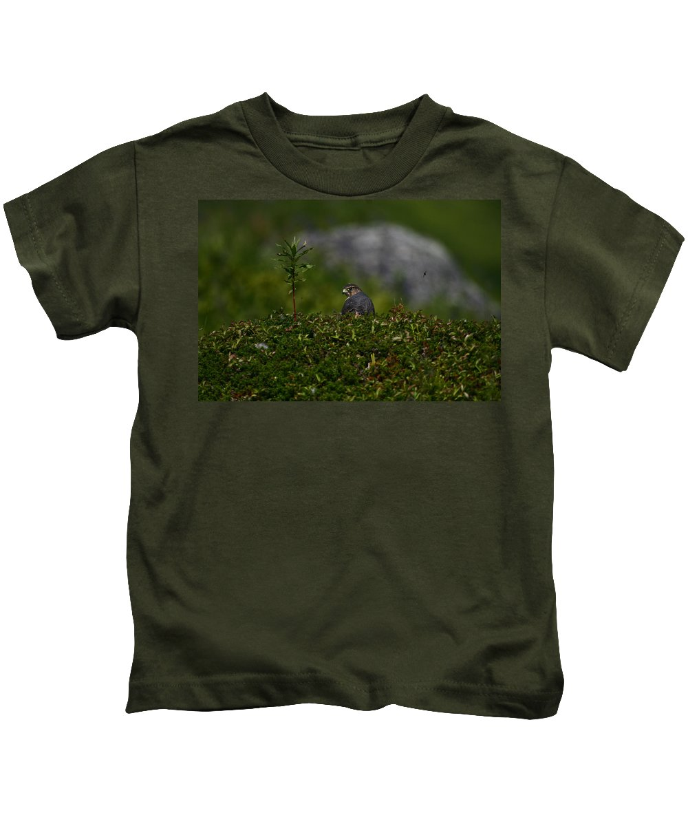 Alaska Kids T-Shirt featuring the photograph Merlin Grounded by Doug Lloyd