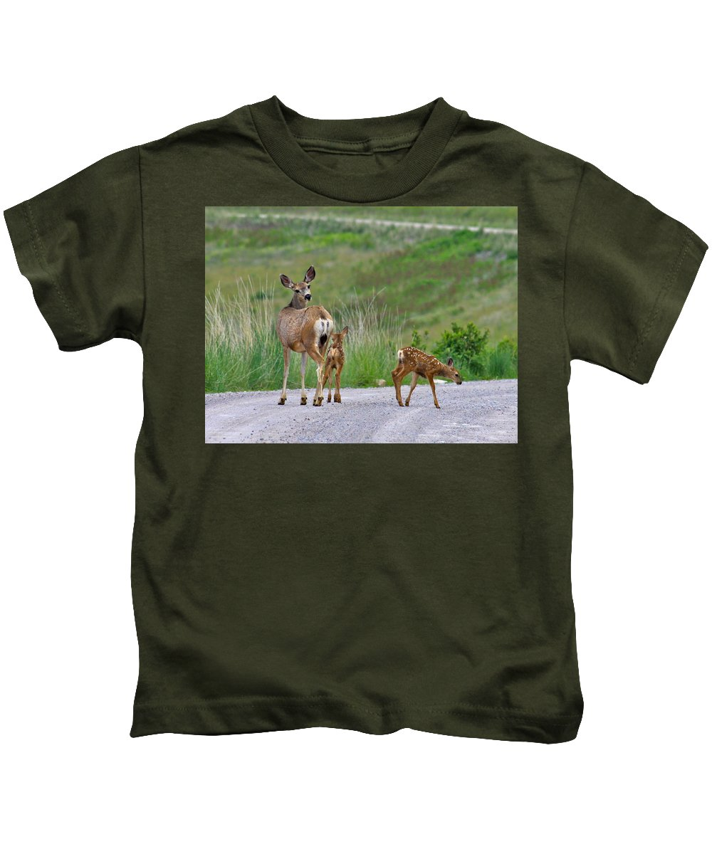 Deer Kids T-Shirt featuring the photograph Mule Deer Doe And Twin Fawns by Karon Melillo DeVega