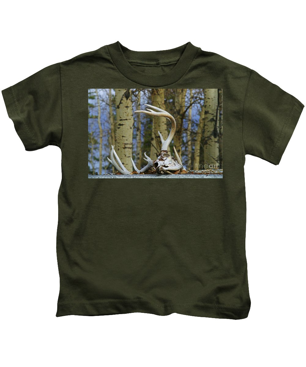 Skull Kids T-Shirt featuring the photograph Old Skull And Antlers by Randy Harris