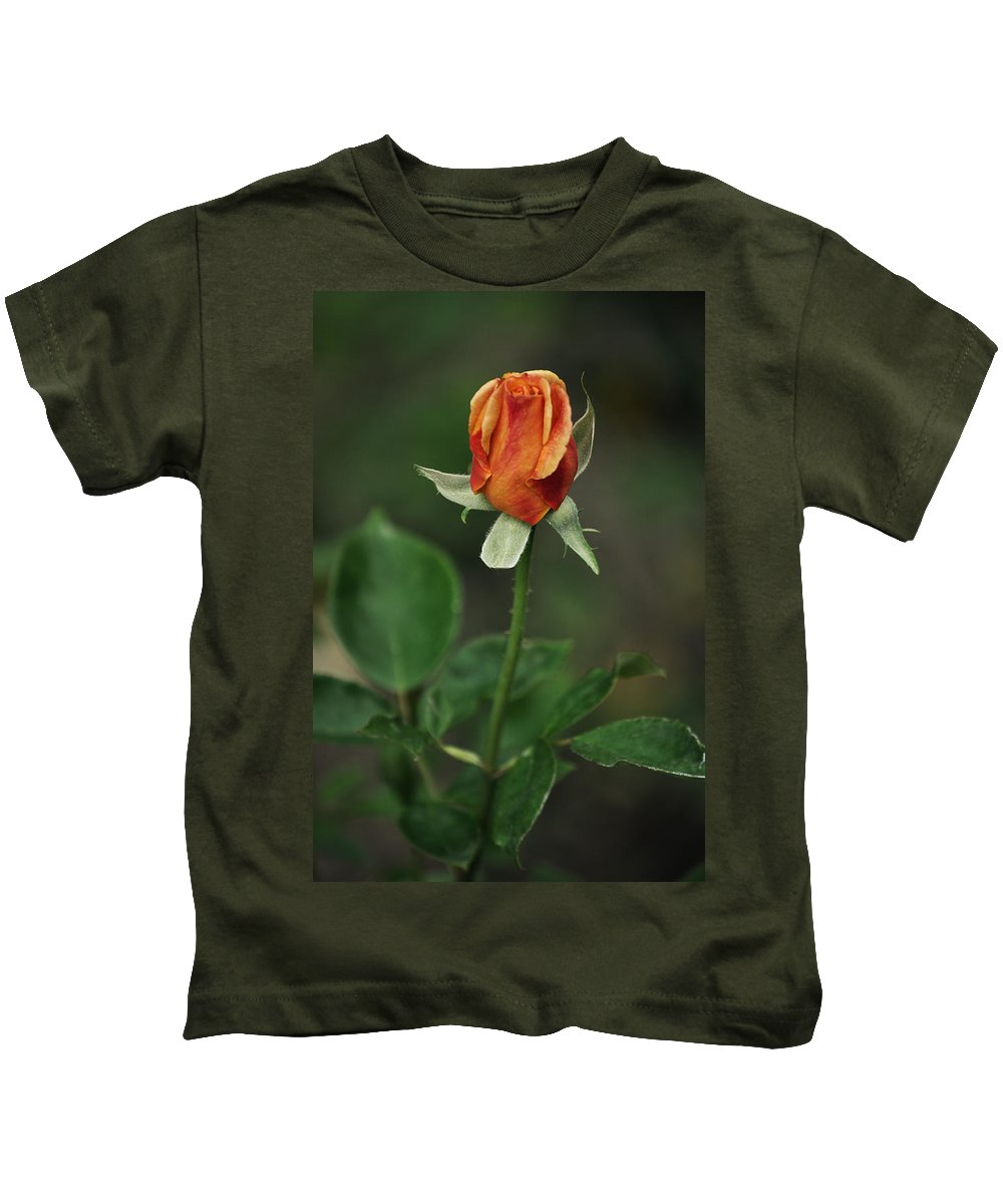 Orange Rose Kids T-Shirt featuring the photograph Orange And Yellow Rose by Mary Machare