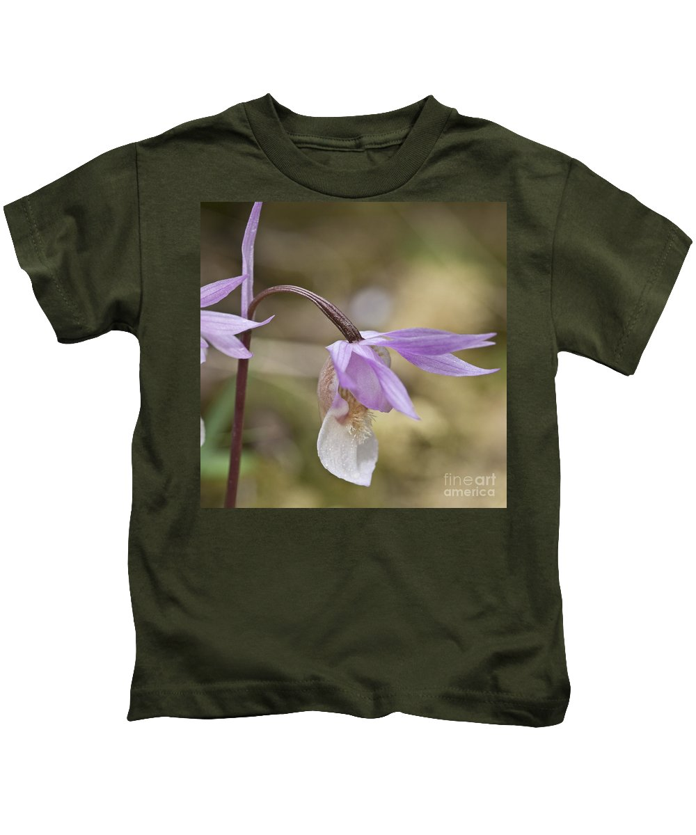 Orchid Kids T-Shirt featuring the photograph Orchid Calypso Bulbosa - 1 by Heiko Koehrer-Wagner