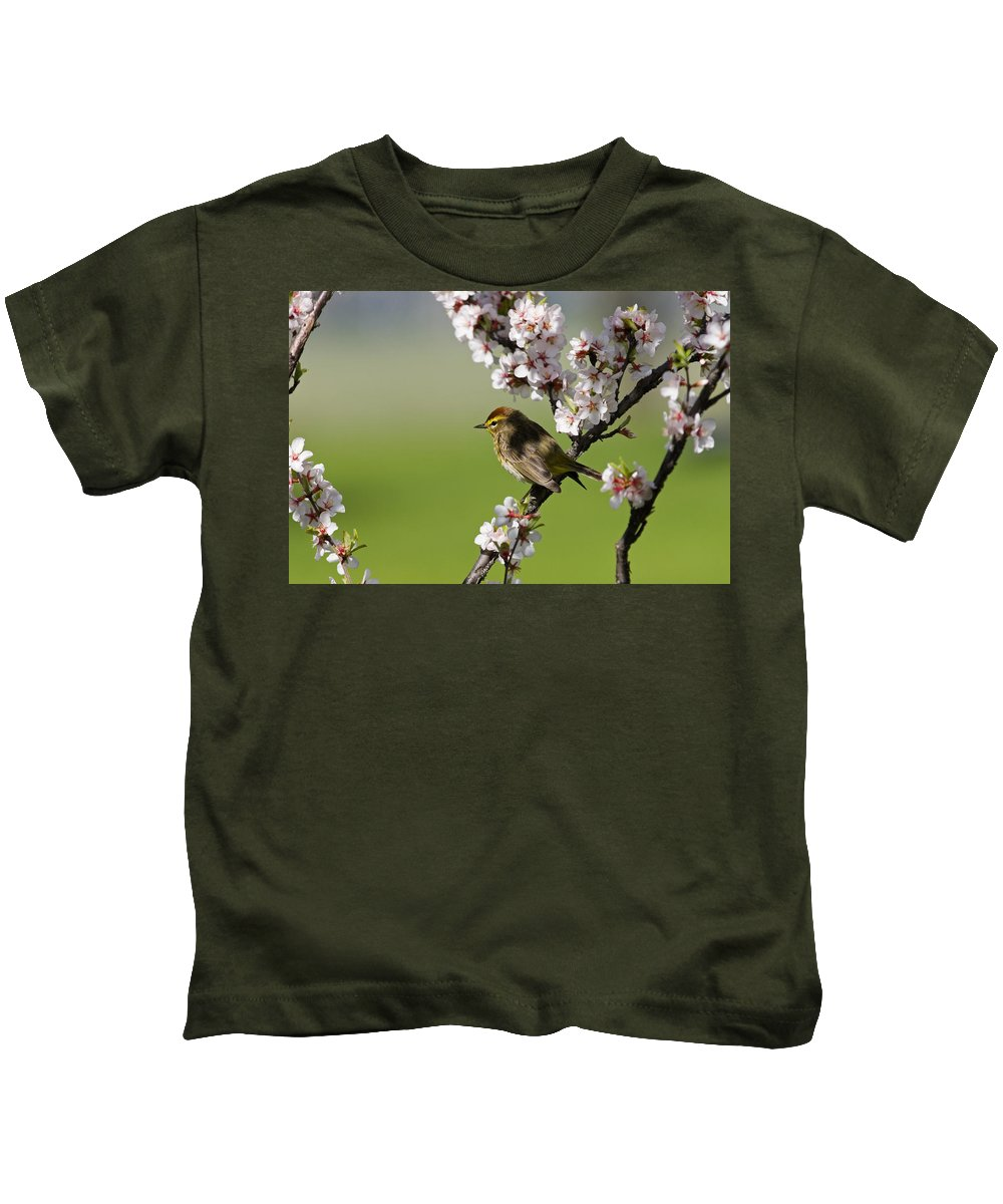 Blooms Kids T-Shirt featuring the photograph Palm Warbler by Mike Grandmailson
