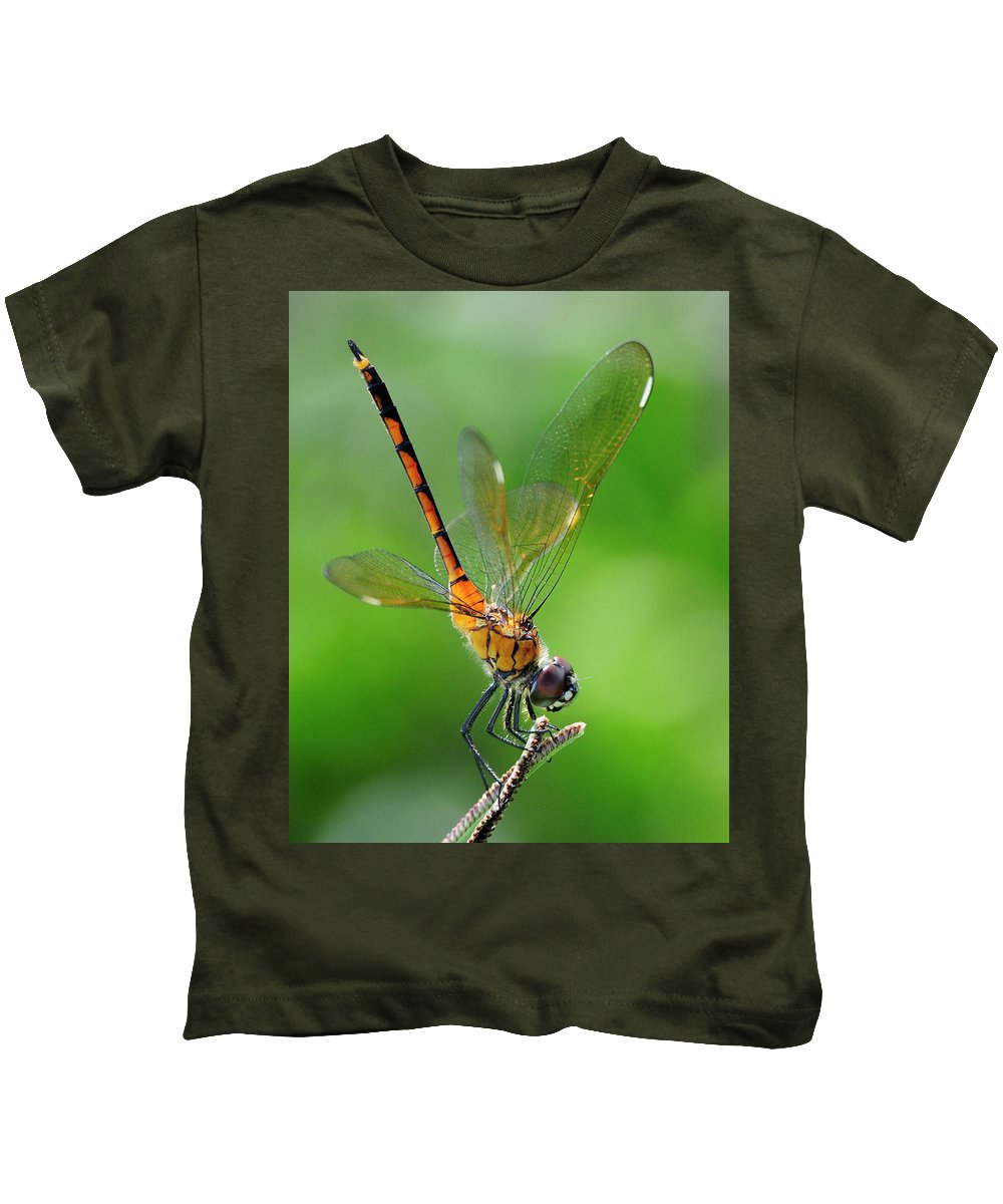 Pennant Kids T-Shirt featuring the photograph Pennant Dragonfly Obilisking by Bill Dodsworth