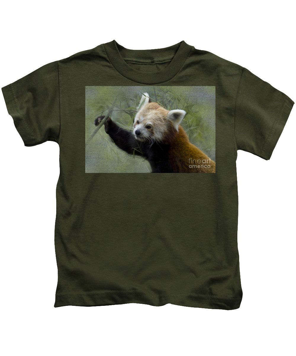 Nature Kids T-Shirt featuring the photograph Red Panda by Heiko Koehrer-Wagner