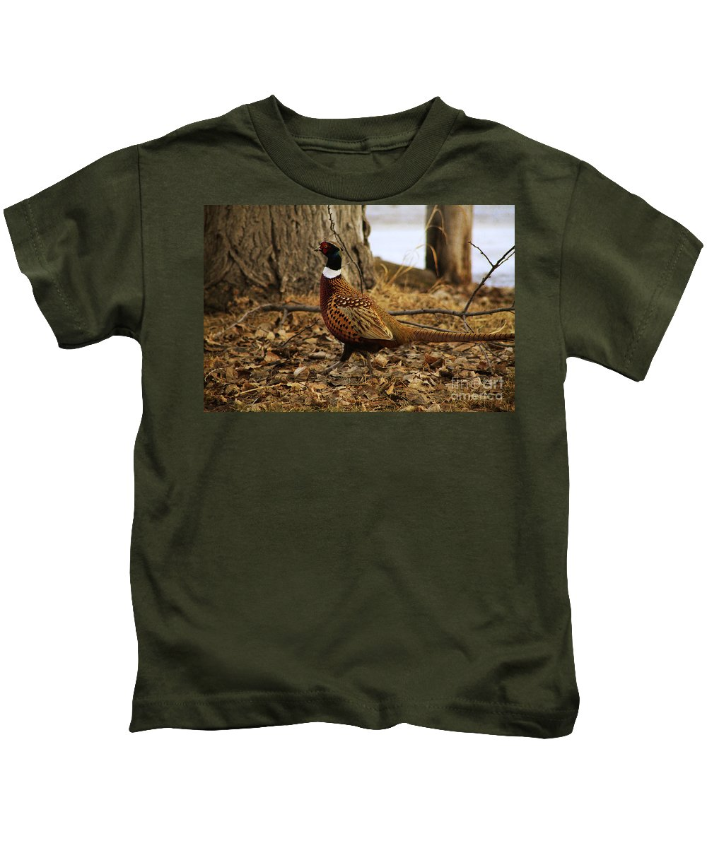 Pheasant Kids T-Shirt featuring the photograph Ring-necked Pheasant by Alyce Taylor