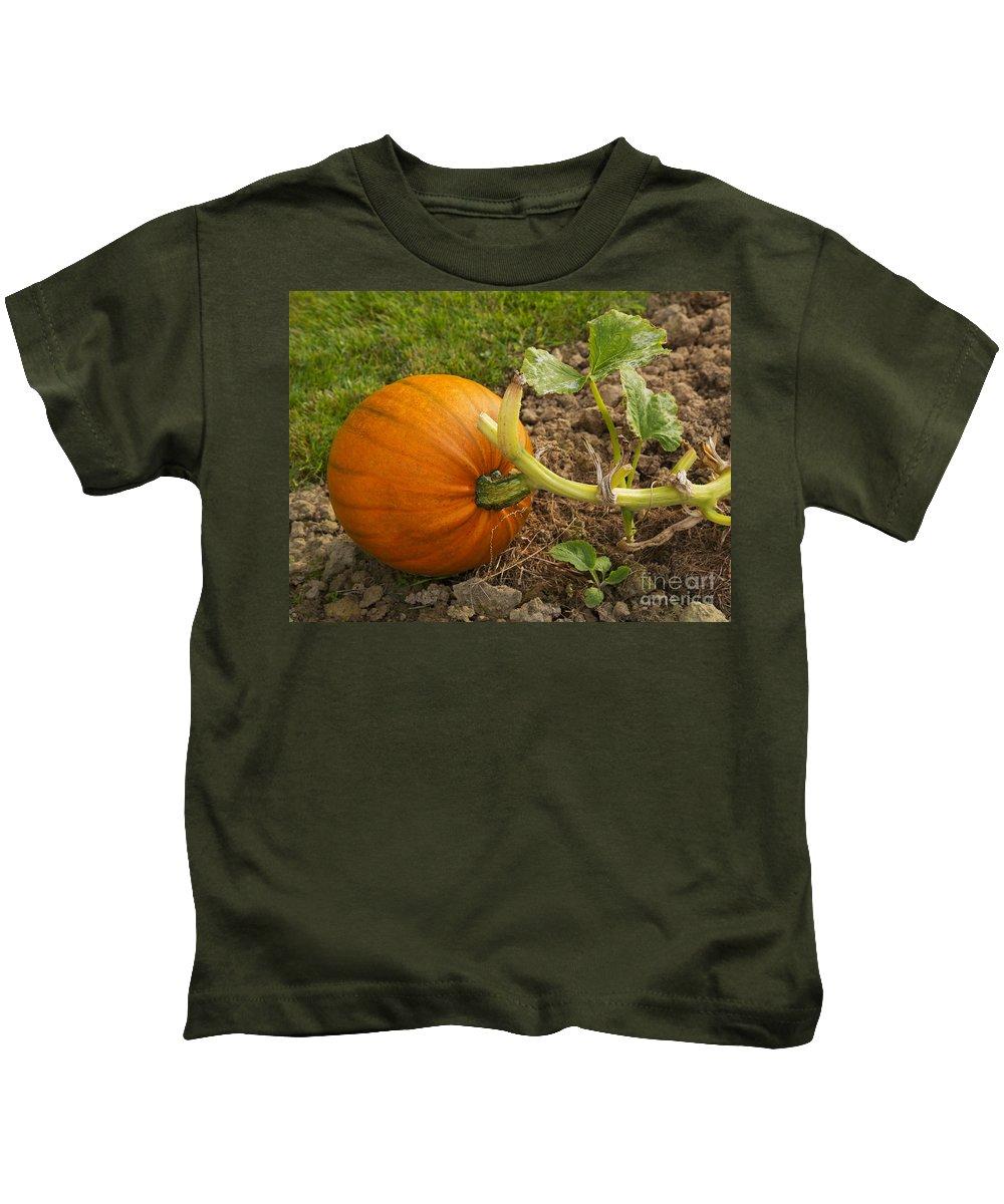Pumpkin Kids T-Shirt featuring the photograph Ripe Pumpkin by Louise Heusinkveld
