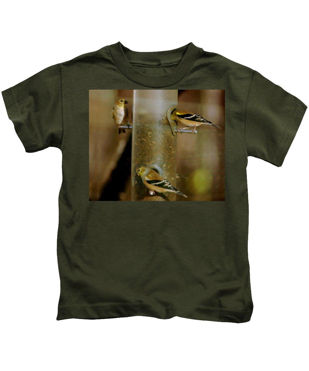 Usa Kids T-Shirt featuring the photograph Seed Eating Song Birds by LeeAnn McLaneGoetz McLaneGoetzStudioLLCcom