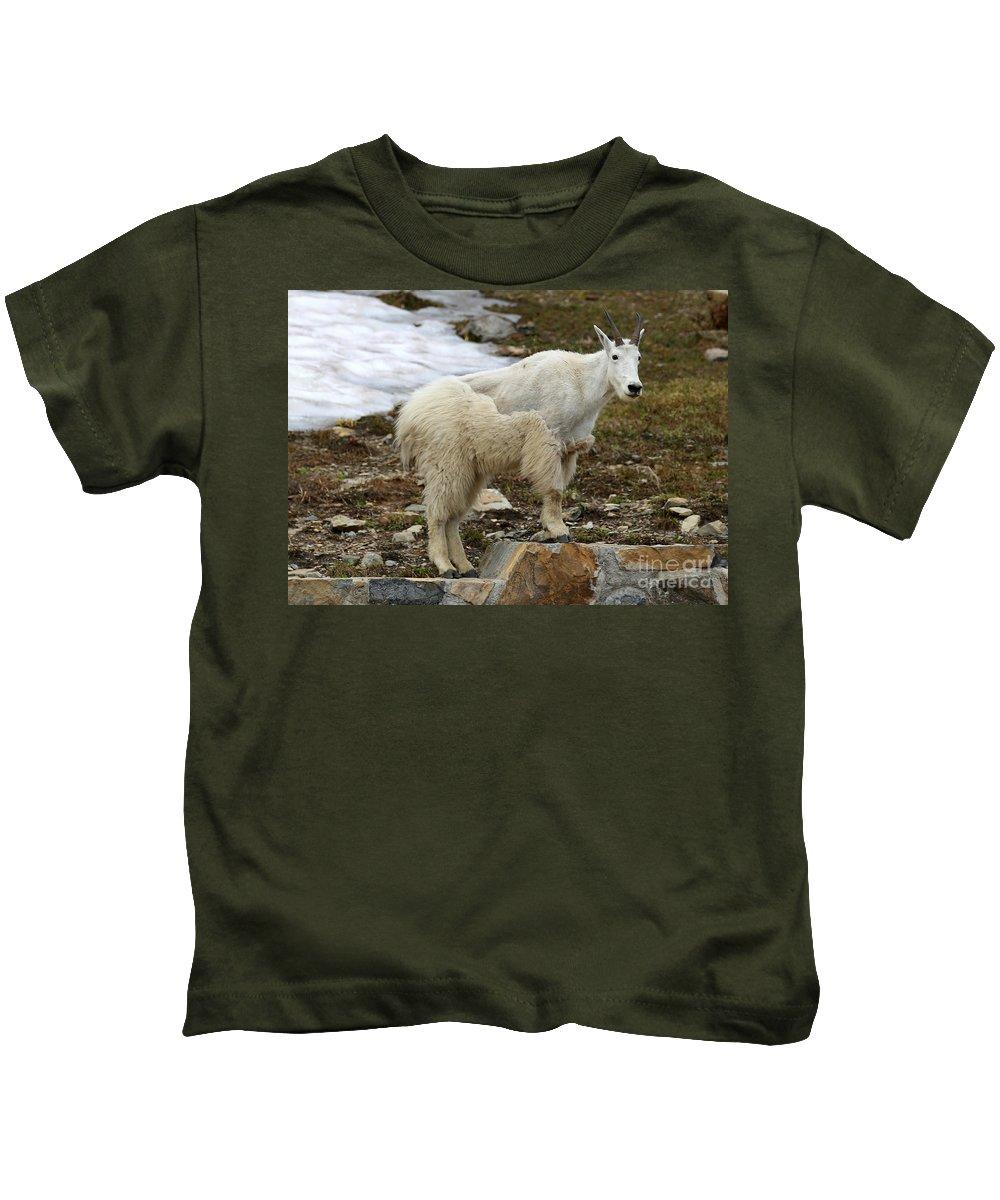 Animal Kids T-Shirt featuring the photograph Shedding Mountain Goat by Carol Groenen