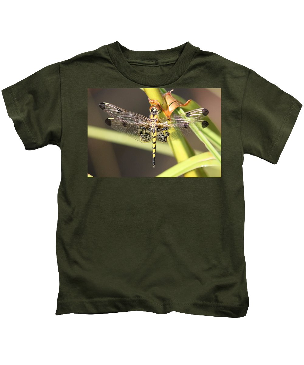 Kids T-Shirt featuring the photograph Sitting Pretty by Travis Truelove