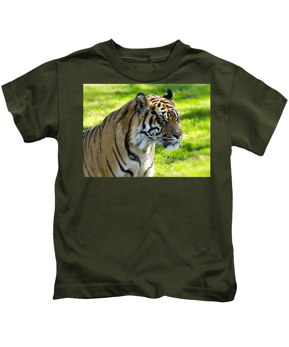 Sumatran Tiger Kids T-Shirt featuring the photograph Sumatran Tiger Portrait by Saija Lehtonen