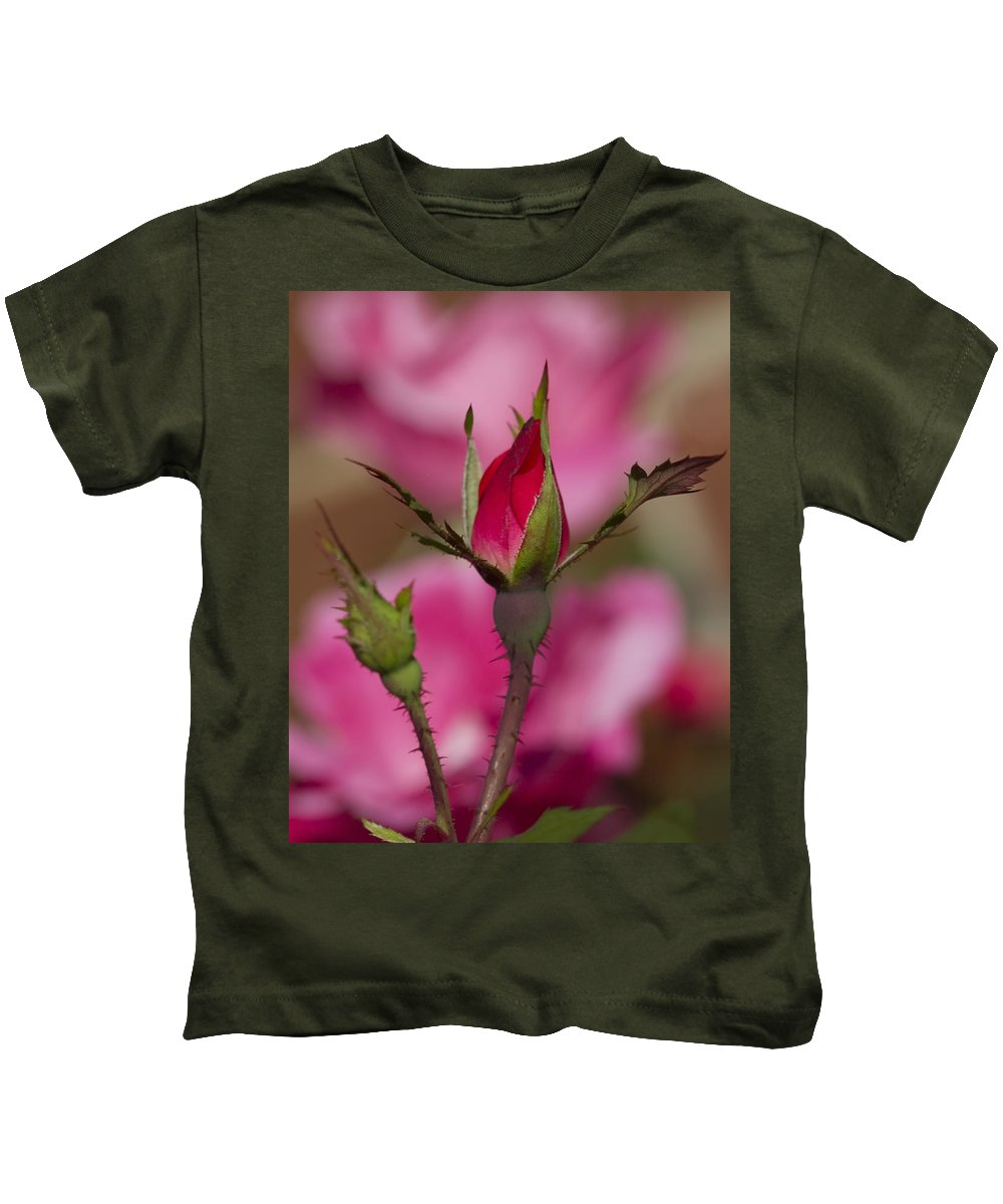 Pink Kids T-Shirt featuring the photograph Sweet Little Rosebud by Kathy Clark