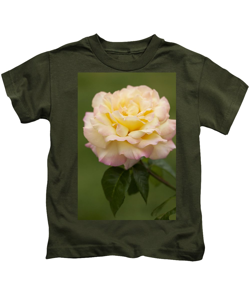 Peace Kids T-Shirt featuring the photograph Sweet Peace Rose by Kathy Clark