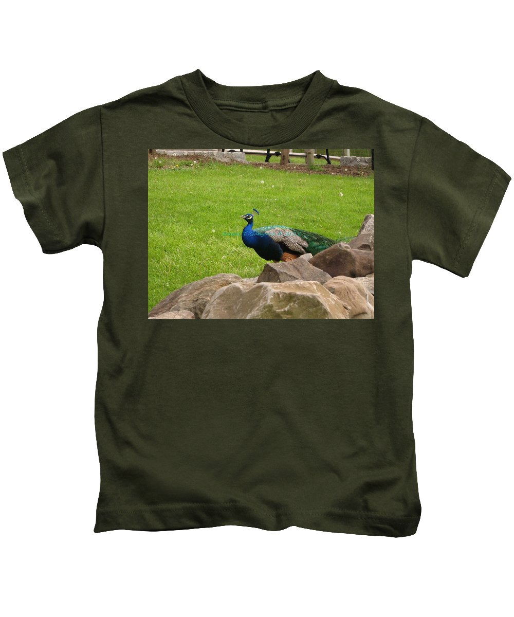 Attractive Male Bird Kids T-Shirt featuring the photograph The Rocking Bird by Sonali Gangane
