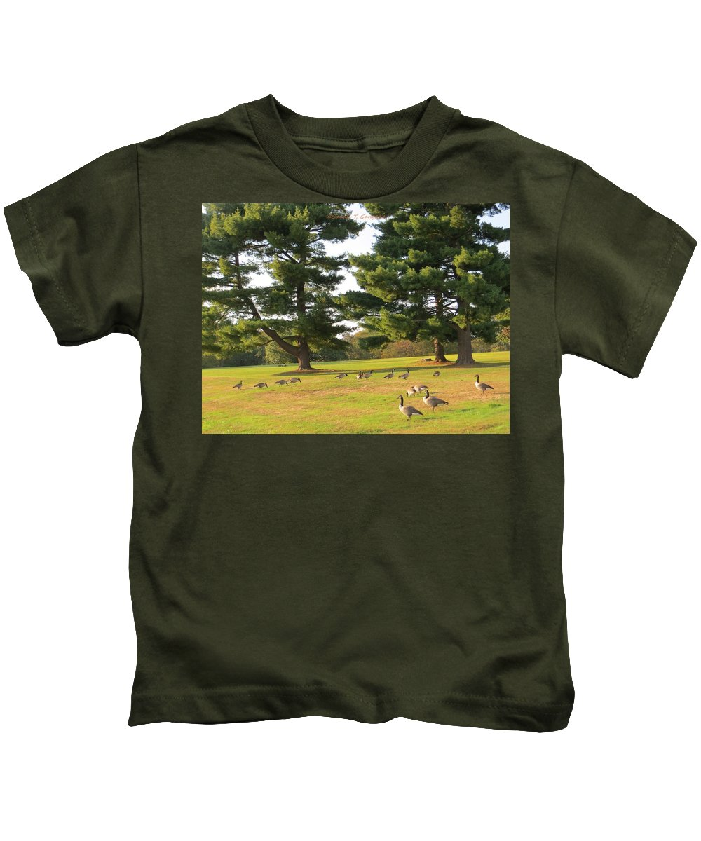 Geese Stroll Kids T-Shirt featuring the photograph The Sunny Stroll by Sonali Gangane