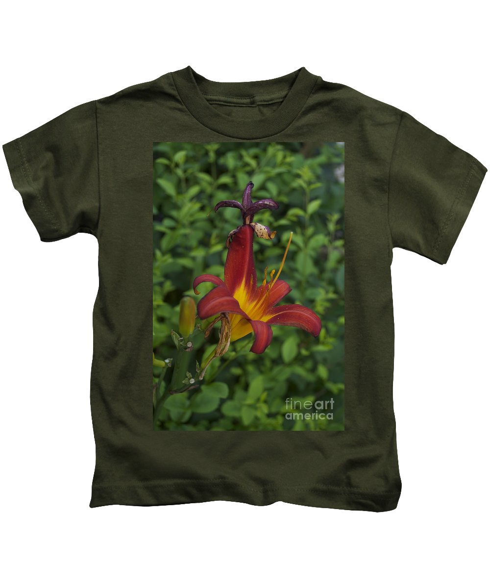 Tiger Lilly Photographs Kids T-Shirt featuring the photograph Tiger Lilly by Catherine Conroy