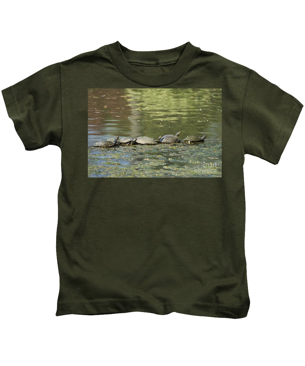Turtles Kids T-Shirt featuring the photograph Turtle Traffic Jam by Tim Mulina
