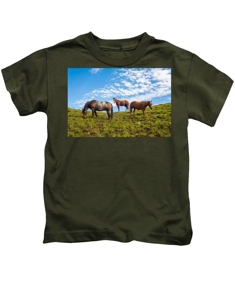 Animal Kids T-Shirt featuring the photograph Two Quarters And An Appaloosa by Semmick Photo