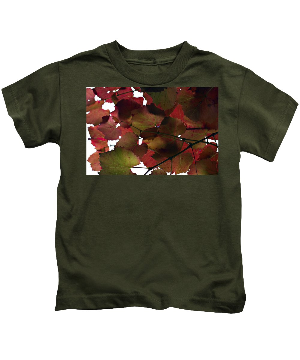 Vine Leaves Kids T-Shirt featuring the photograph Vine Leaves by Douglas Barnard
