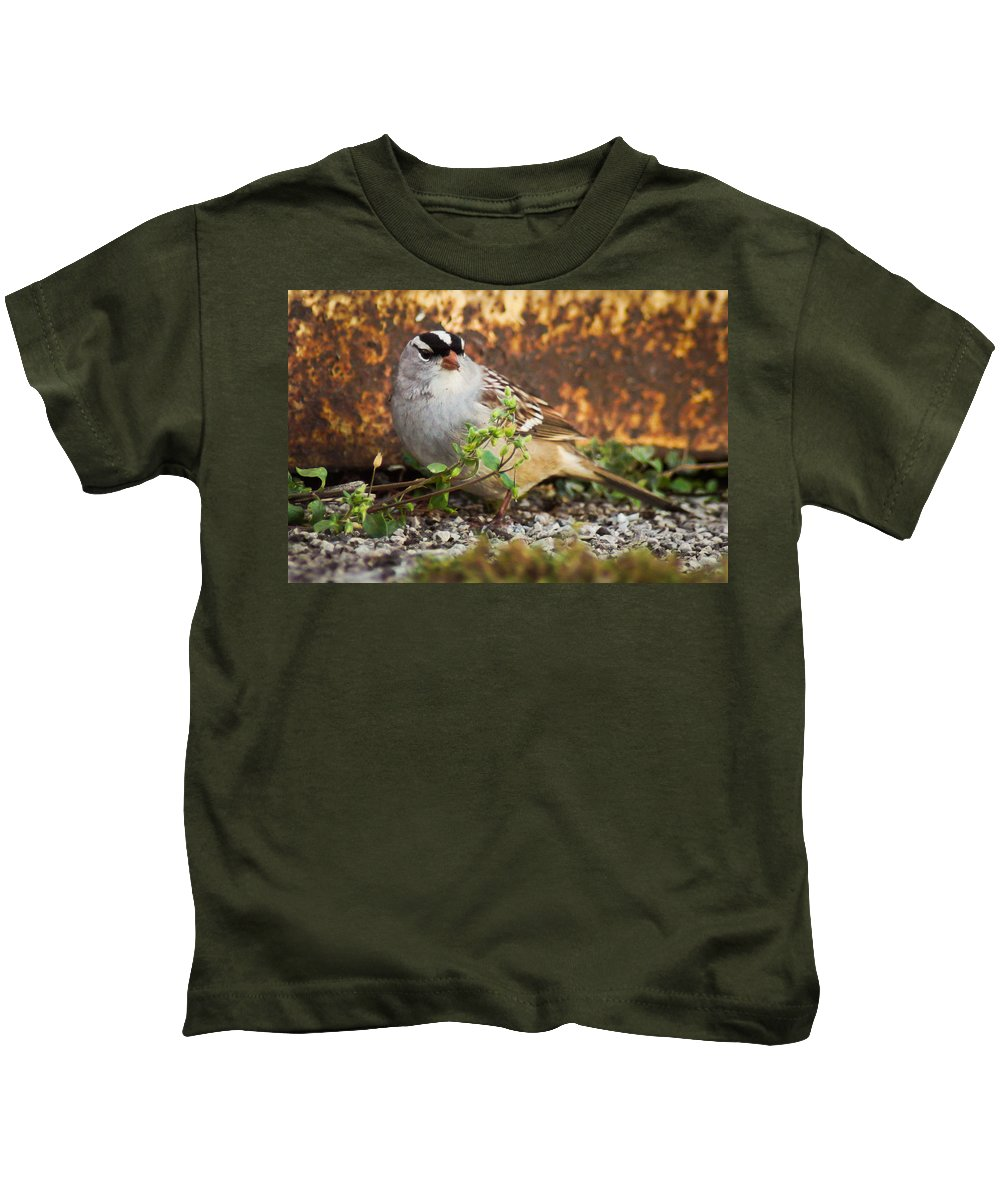 Bird Kids T-Shirt featuring the photograph White Crowned Sparrow by Bill Pevlor