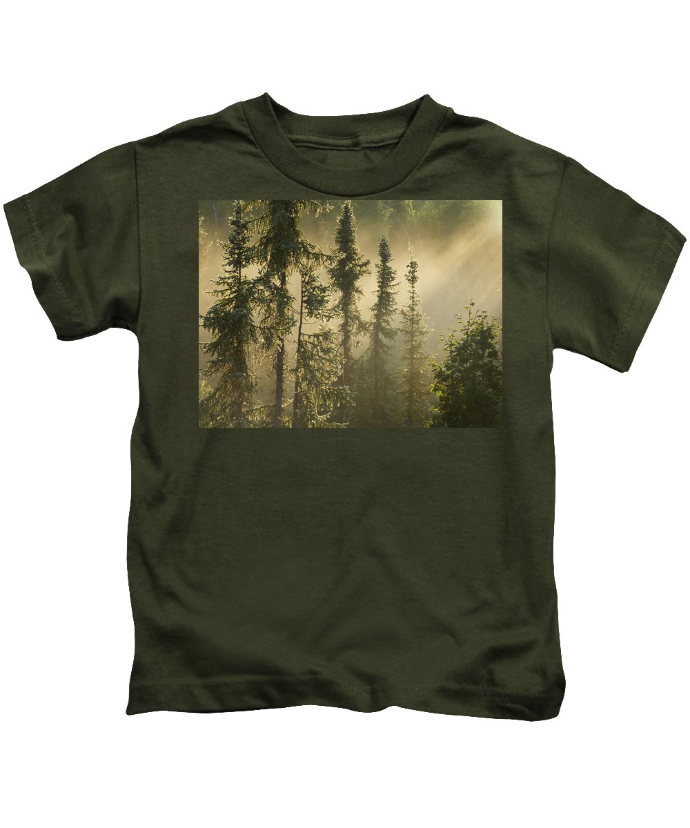 Color Images Kids T-Shirt featuring the photograph White Spruce In Mist At Sunrise by Philippe Henry