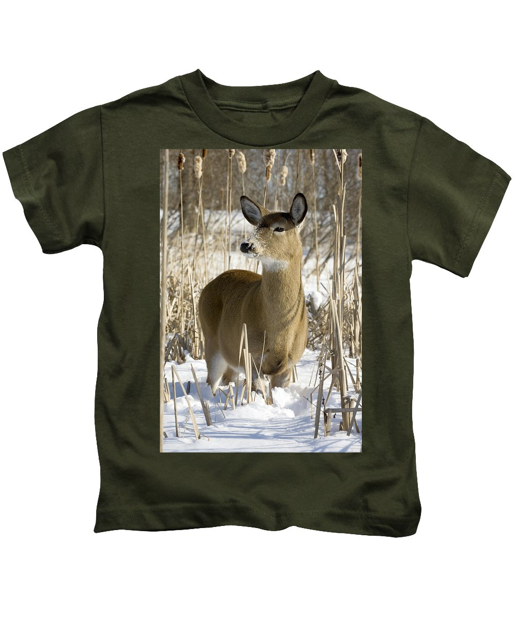 Chilly Kids T-Shirt featuring the photograph White-tailed Deer In A Snow-covered by Philippe Henry