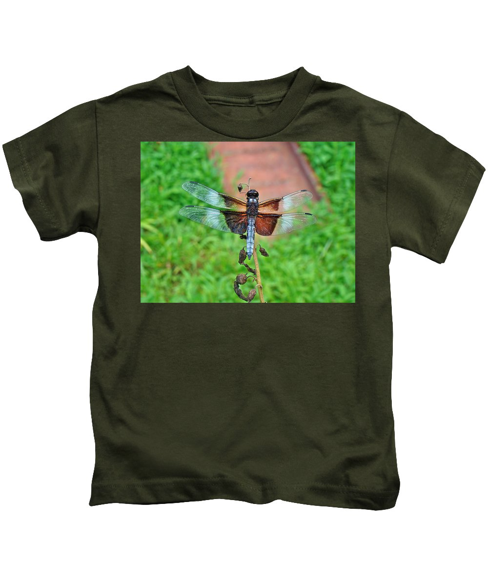 Dragonfly Kids T-Shirt featuring the photograph Widow Skimmer Dragonfly - Libellula Luctuosa by Mother Nature