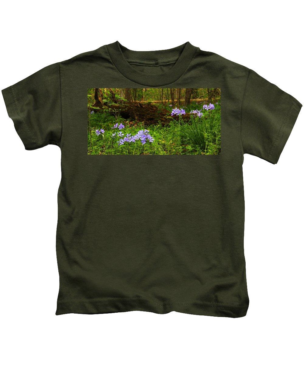 Wild Phlox Kids T-Shirt featuring the photograph Wild Phlox In The Woodlands by Greg Matchick