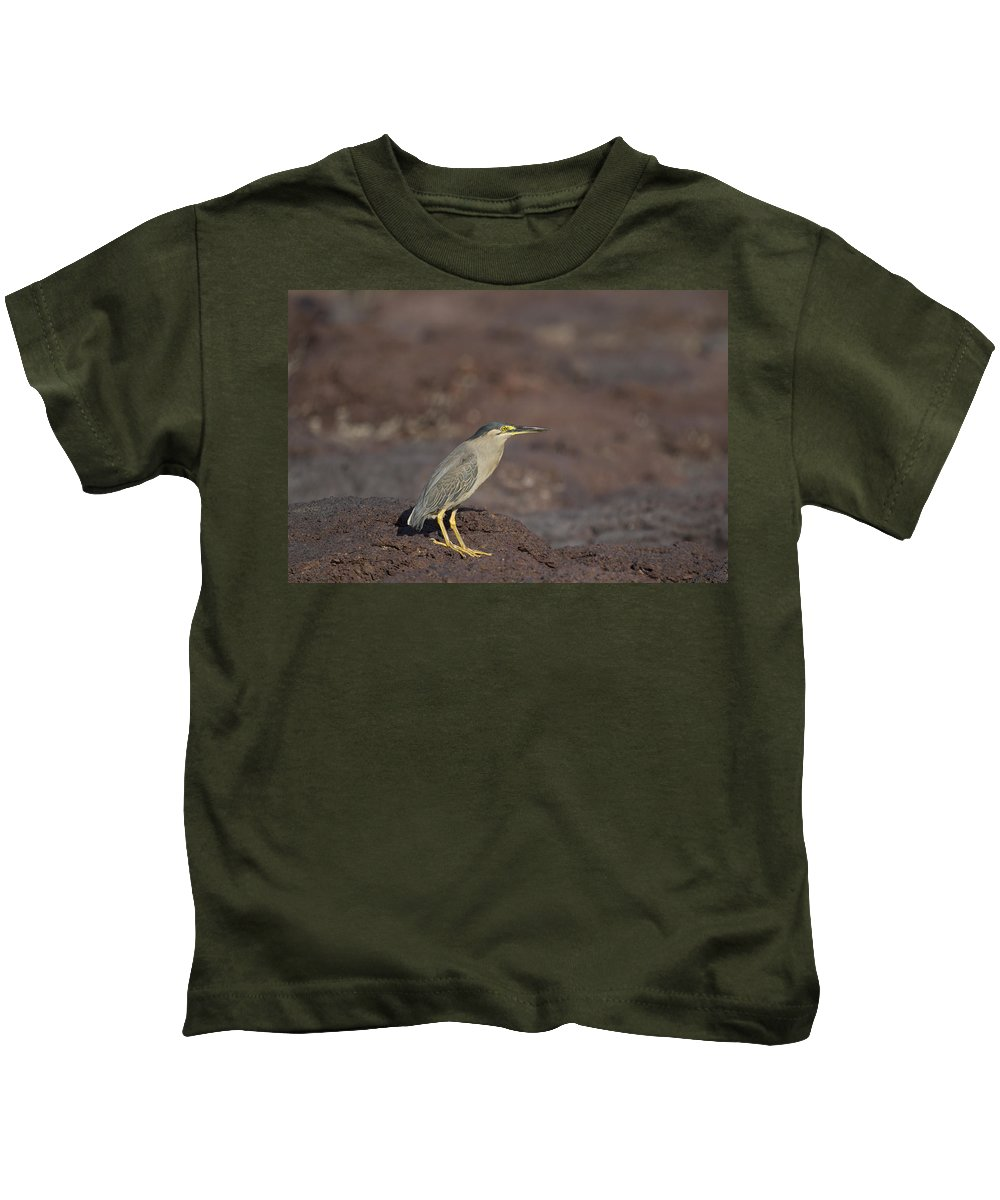 Striated Heron Kids T-Shirt featuring the photograph Yellow Eyes V2 by Douglas Barnard