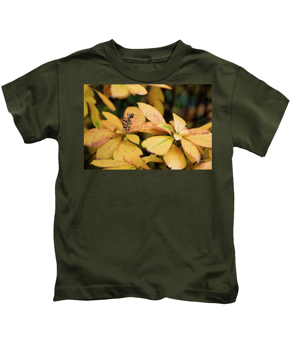 New York City Kids T-Shirt featuring the photograph Yellow Petal Leaf With Sprig by Lorraine Devon Wilke